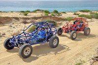 Cabo Dune Buggy Tour