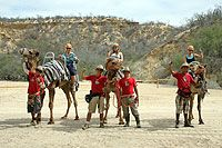 Camel Riding Tour Cabo San Lucas Mexico