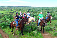 Ensenada Horseback Riding