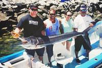 Panga Fishing Cabo San Lucas Cheap Fishing Trips