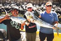 Panga fishing cabo san lucas cheap fishing trips for Cabo san lucas fishing charters prices