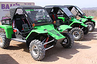 Green Zebra Cabo San Lucas Rally Cars