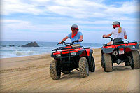 Cabo ATV Tour & Horseback Riding
