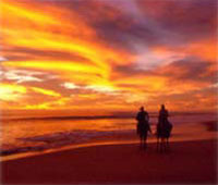 Horseback Riding Sunset Tour