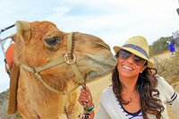 Camel Encounter Los Cabos