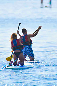 Sup Paddle Boarding Snorkeling Tour Cabo San Lucas