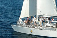 Private Sailing Los Cabos