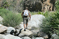 Cabo San Lucas Hiking Tour