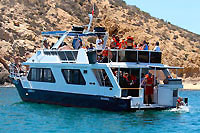 Cabo San Lucas Private Tour Charter