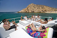 Whale Watching Excursion Cabo San Lucas