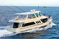 Cabo Fishing - Luxury Yacht