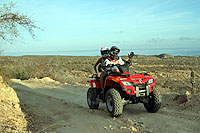 Cabo ATV Excursion