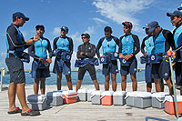 Cabo San Lucas Dolphin Trainers